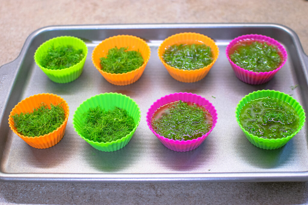 Baking Sheet with muffin tin of fresh herbs in oil