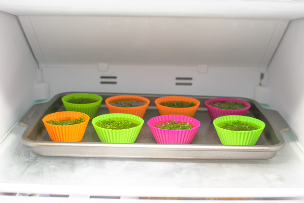 tray of muffin tin filled with herbs in the freezer